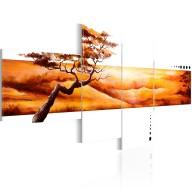 Obraz  Pomarańczowe chmury nad sawanną