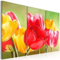 Obraz  Znów zakwitły tulipany...