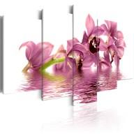 Obraz  Lilie zanurzone w wodzie