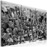 Obraz  Niesamowity widok na dachy Nowego Jorku