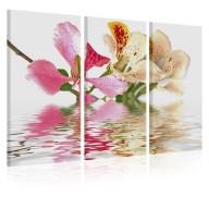 Obraz  Orchidea w cętki