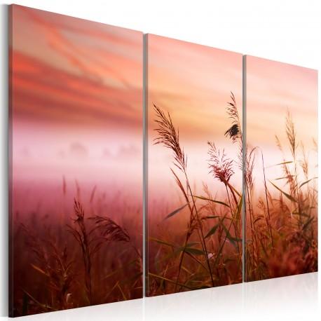 Obraz  Cicha łąka