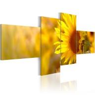 Obraz  Słoneczne słoneczniki