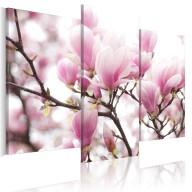 Obraz  Wiosna w ogrodzie