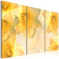 Obraz  Delikatne lilie w odcieniu żółtym