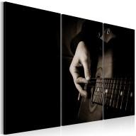 Obraz  Gitarzysta