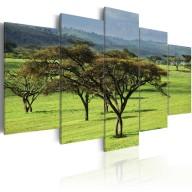 Obraz - Zielona Afryka