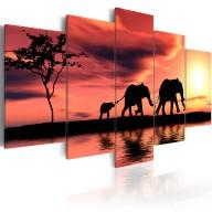 Obraz  Rodzina afrykańskich słoni