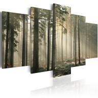 Obraz  Smuga światła w ciemnym lesie
