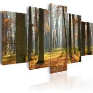 Obraz  Malowniczy krajobraz leśny
