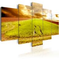 Obraz - Ślady kół na polu