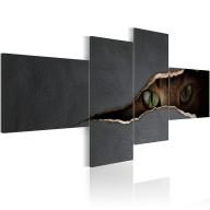 Obraz  Kocie oczy
