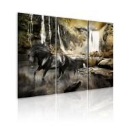 Obraz  Czarny rumak i skalisty wodospad