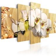 Obraz  Plaża i orchidea
