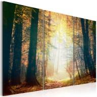 Obraz  Piękno jesieni  tryptyk