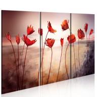 Obraz  Bright red poppies