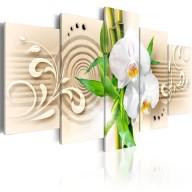 Obraz  Orchidee, babmbus i zen
