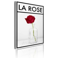 Obraz  La rose