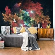 Fototapeta  Kolorowy las