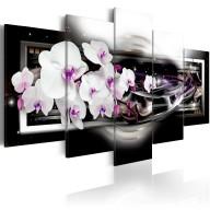 Obraz  Orchidee na czarnym tle