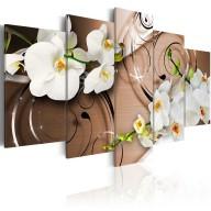 Obraz  Orchidee w kolorze kości słoniowej