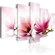 Obraz  Magnolie różowe kwiaty