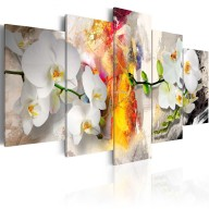 Obraz  Orchidea i kolory