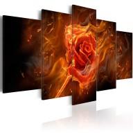 Obraz  Płonąca róża