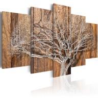 Obraz  Kronika drzewa