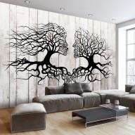 Fototapeta  Pocałunek drzew