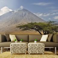 Fototapeta  Wulkan Ol Doinyo Lengai  Tanzania, Afryka