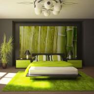 Fototapeta  Egzotyczny klimat  bambus