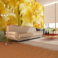 Fototapeta  Yellow azalea