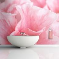 Fototapeta  Różowe kwiaty azalii