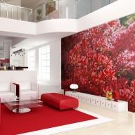 Fototapeta  Rhododendron, Japanische azalea