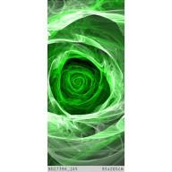 Róża fraktalna green