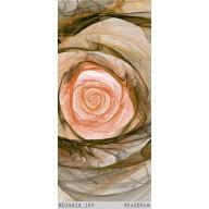 Róża fraktalowa