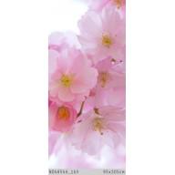 Kwiaty wiśnii