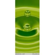 Zielona woda