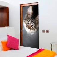 Fototapeta na drzwi  Uroczy kotek