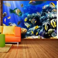 Fototapeta  Podwodna przygoda