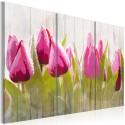 Obraz - Wiosenny bukiet tulipanów