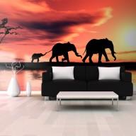 Fototapeta XXL  słonie rodzina