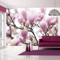 Fototapeta  Gałązka kwitnącej magnolii
