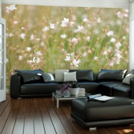 Fototapeta  Białe delikatne kwiatuszki
