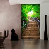 Fototapeta na drzwi  Tapeta na drzwi  Schody z natury