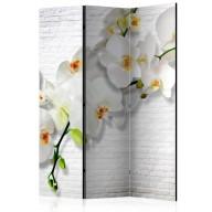 Parawan 3częściowy  Miejska orchidea [Room Dividers]
