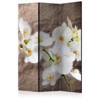 Parawan 3częściowy  Nieskazitelność orchidei [Room Dividers]