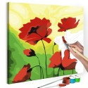 Obraz do samodzielnego malowania - Poppies