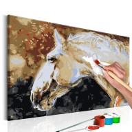 Obraz do samodzielnego malowania  Biały koń